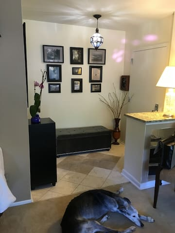Cozy one-bedroom retreat near IAD - Reston - Departamento