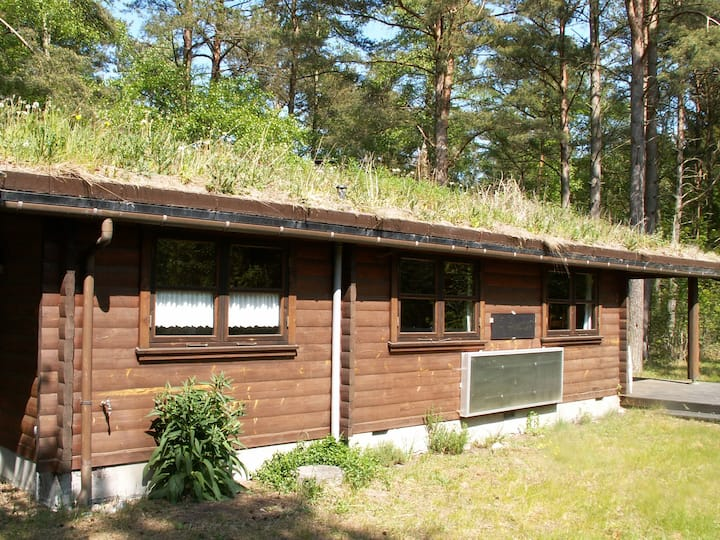 Log Cabin in North Zealand