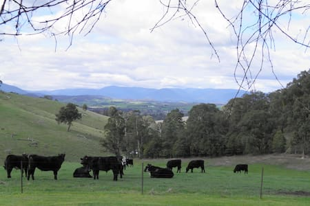 Yarra Glen - peaceful retreat, beautiful views.