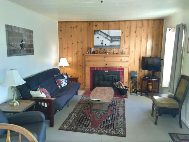 Cozy Living Room With Fireplace and Futon That Folds Down To Double Bed, Wifi & Cable TV/DVR Player!