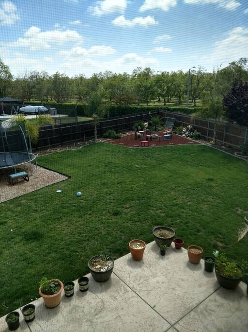 Local orchards and beautifully landscaped backyard.
