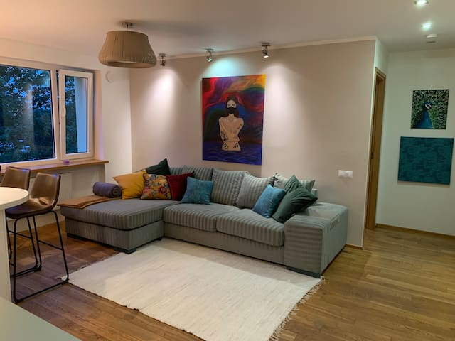 Cosy 2-bedroom apartment in the city centre