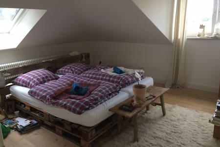 120qm Wohnung in Jugenstil-Altbau-Haus - Melle - Wohnung