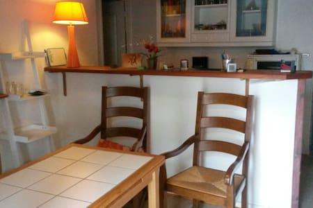 Idéal curiste petit prix - Aix-les-Bains - Apartamento