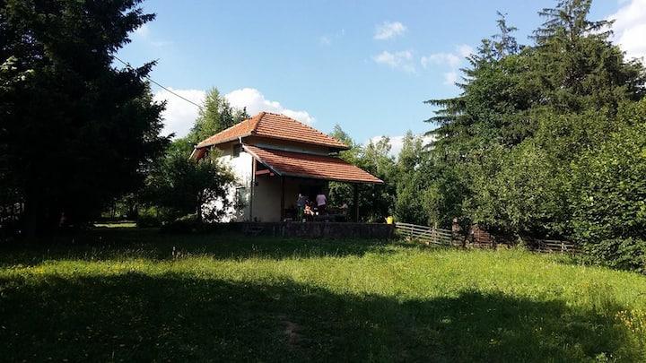 Enchanting house