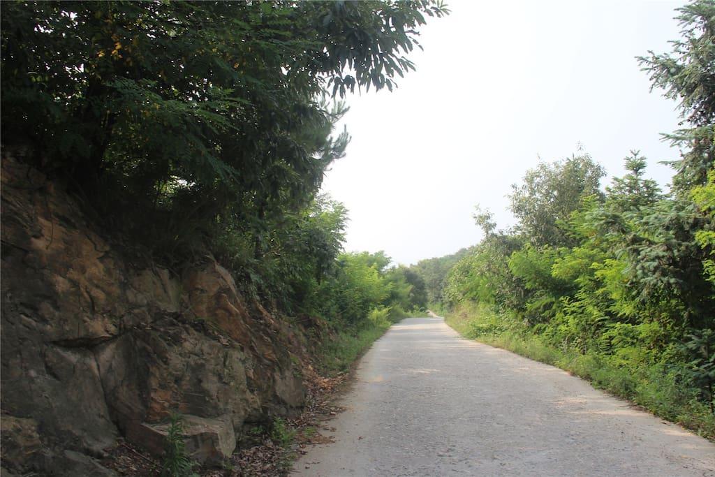 到达武当山玉虚宫后,一路就是原生态乡村道路(仅4.5公里)
