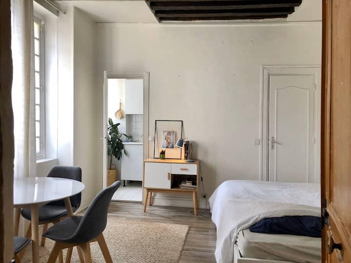 Appartement cosy, calme et lumineux PARIS CENTRE