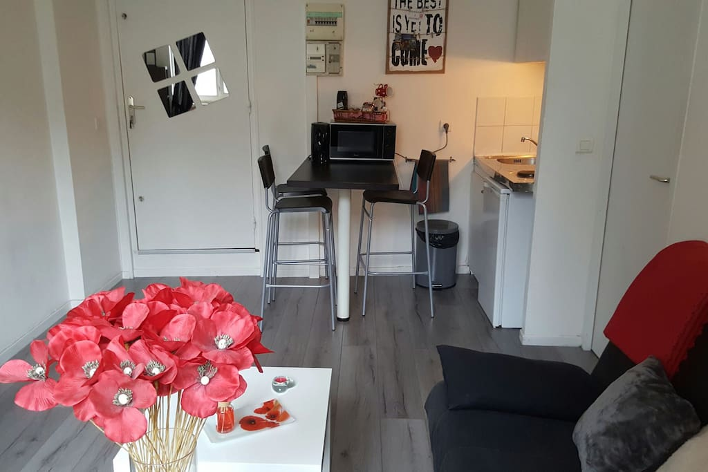 Appartement Grenoble Hyper Centre
