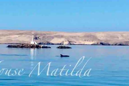 House Matilda-studio apartment directly on the sea