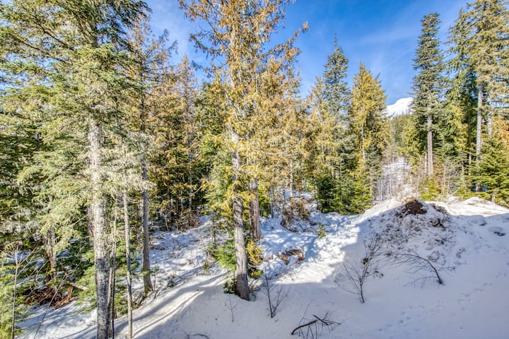 Stunning resort condo w/luxury amenities, shared pool & easy access to slopes!