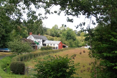 Bed and Breakfast in Mid Wales Double room - Pontdolgoch - อพาร์ทเมนท์