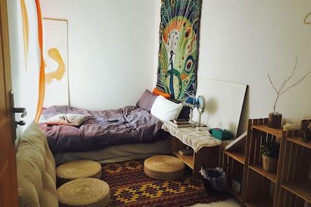 欢迎你来吃我做的饭睡我的猫躺我的床来一摄影师与造型师的家/koko@卤蛋哥哥的改造小屋