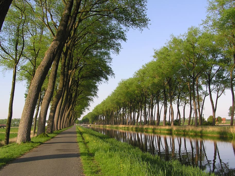 Bikers, walkers can enjoy for all days along the canal between Brugge-Dammeho is on 4 km.