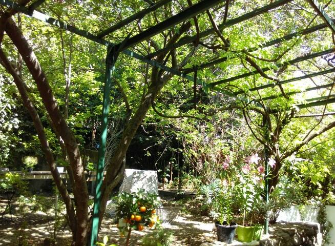Appartement avec jardin, Porte Sud de Paris