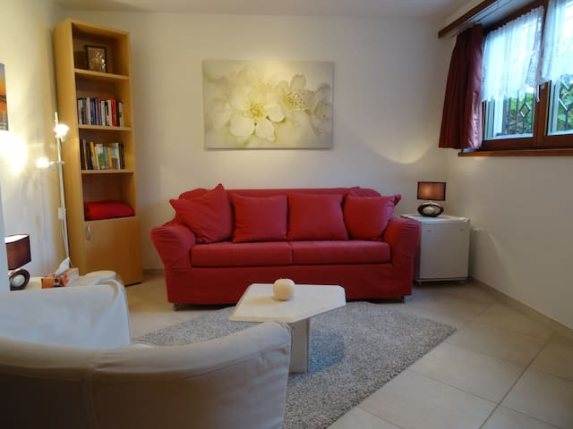Small and cosy. Close to Zürich! - Bertschikon - Apartemen
