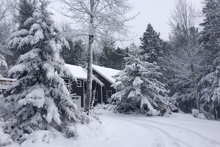 Hunter Mountain ski house. Mountaintop Retreat. - Elka Park - Ev