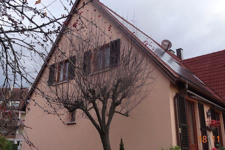 La chambre abricot au milieu du vignoble - Ammerschwihr
