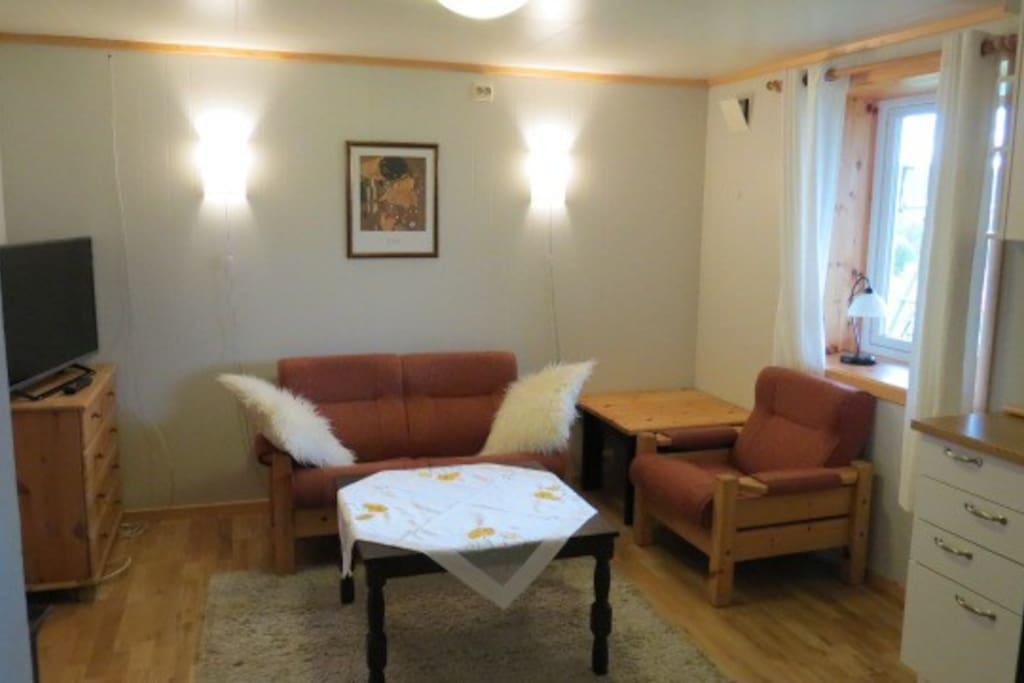Stue(kombinert stue og kjøkken) og spisekrok