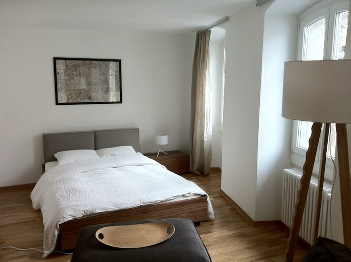 Cosy modern appartement in the Vevey City center !