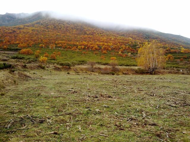 Un paisaje desde el molino