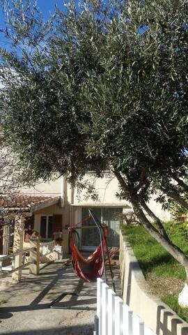 Entrée olivier