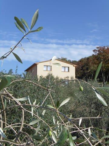 casa vacanza appartamento Menta - Sticciano