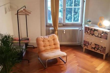 Geniesse Basel in gemütlicher zentraler Wohnung - Basel - Byt