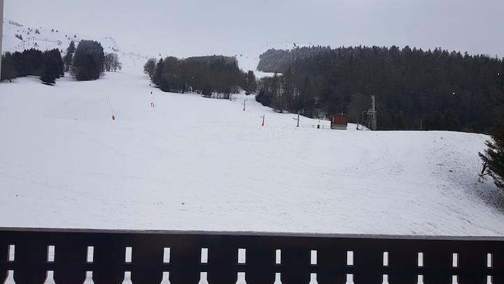 Studio ski 4 personnes - Alpe du Grand Serre