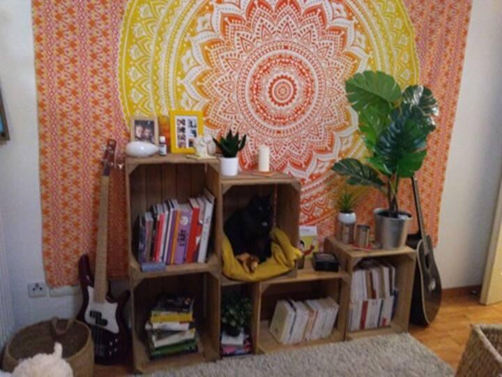 Appartement calme incluant petit chat adorable