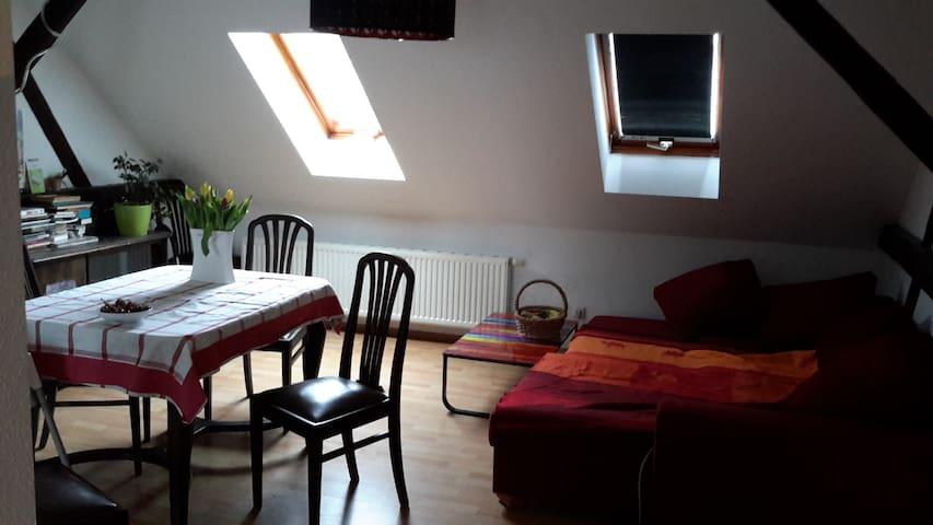 Gemütliches Gästezimmer unterm Dach - Halle (Saale) - Apartment