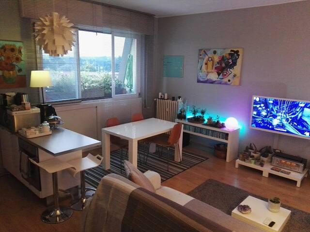 Cozy flat near Monza