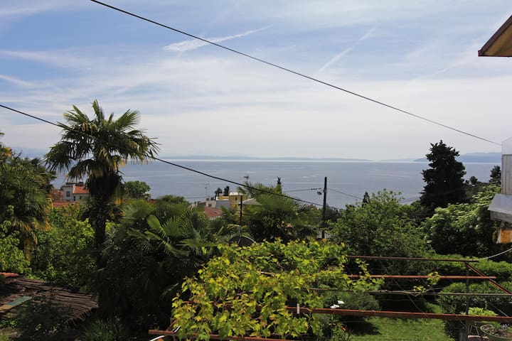Sunny apt 40 sqm-walking distance to center