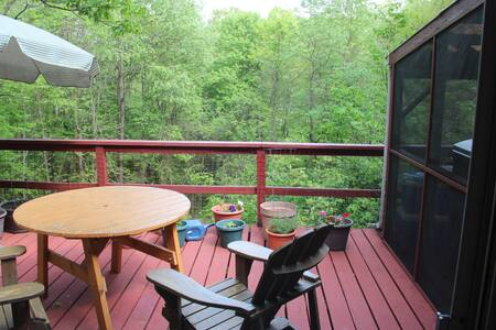 Secluded House with Views  and Lake Beach Access - Copake - House