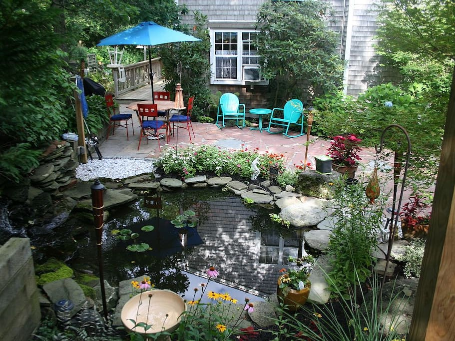 The Patio and pond