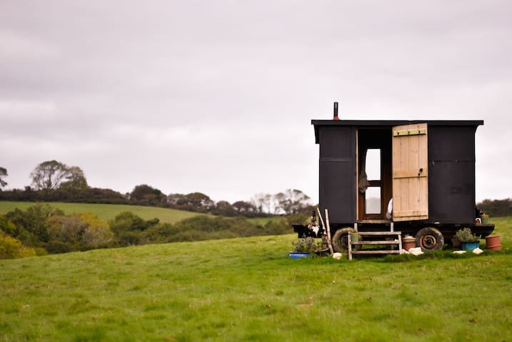 Shepherds Hut w/burner near to sea - a cosy treat