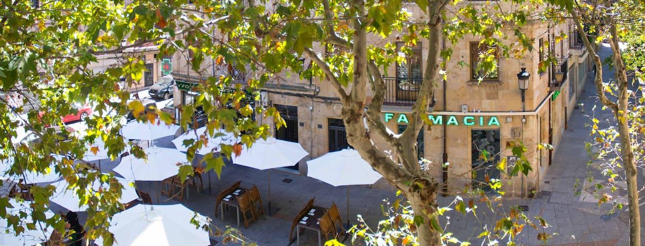 Basilios apartment for 3 or 4 - Salamanca - Daire