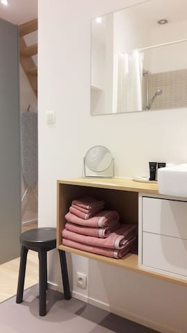 Private studio, bathroom (shower)