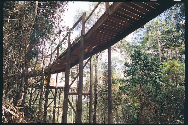 Lyola Pavilions in the forest,  Maleny