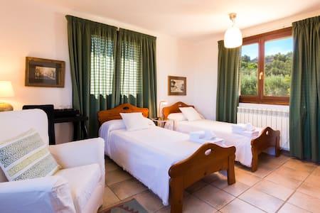 Habitación dos camas en preciosa finca rústica - Santa Eugènia
