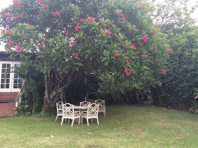 Maui's Women-Only Guest House 2 - Haiku-Pauwela