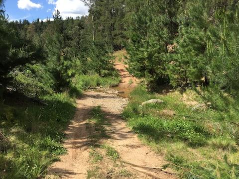 350 acres with 1km creek, 4x4, bike