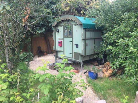 Romany Gypsy Hut among Chickens, Orchard and Fire