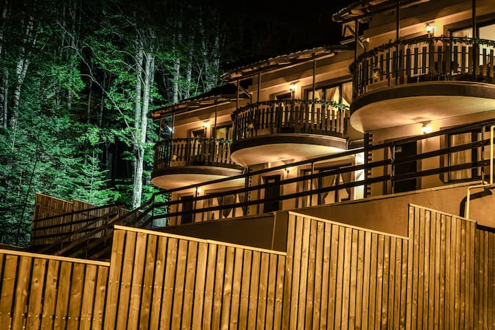 ELATOS Sinaia Luxury Villas - Artemis