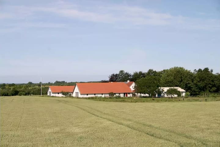 Countryside charm at Agermosegaard - Assens