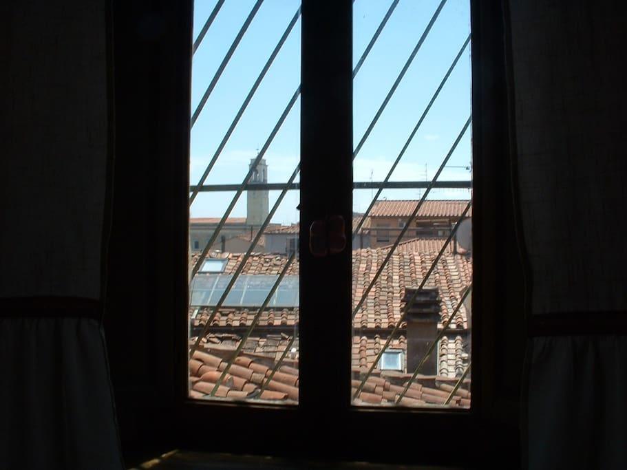 Tetti di Pisa dalla mansarda