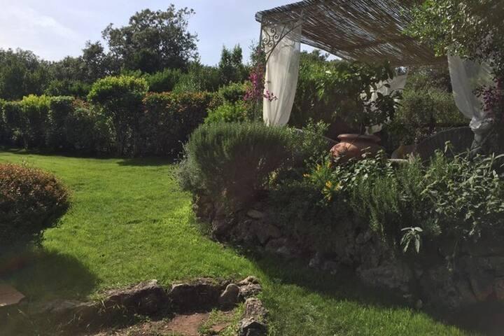 Casa con ampio giardino a Capalbio