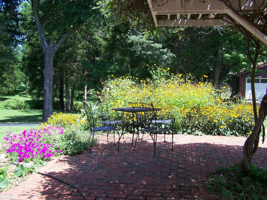 Brick patio in back yard.