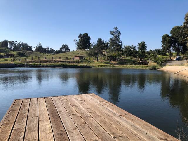 Studio on 10 Acre Ranch w/ Pond, Fishing, Horses