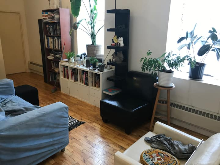 Sunny Apt by Park, Blvd , BK Museum & Library