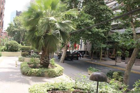 Hermoso departamento, excelente ubicacion - Las Condes